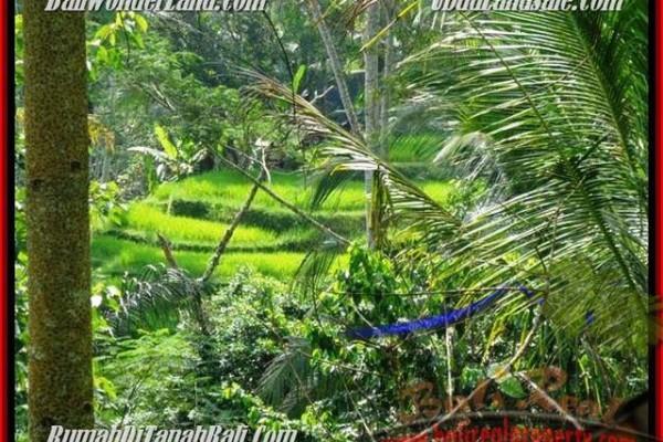 Beautiful PROPERTY 725 m2 LAND SALE IN UBUD BALI TJUB495