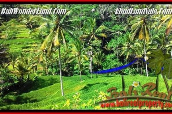 LAND SALE IN Ubud Tegalalang TJUB496