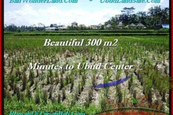 Beautiful Sentral Ubud BALI LAND FOR SALE TJUB500