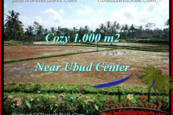 Affordable PROPERTY LAND SALE IN Sentral Ubud BALI TJUB501