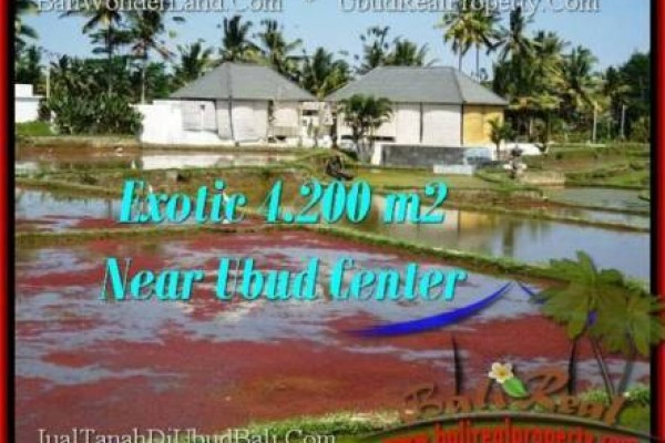 FOR SALE Exotic PROPERTY LAND IN Sentral Ubud BALI TJUB502