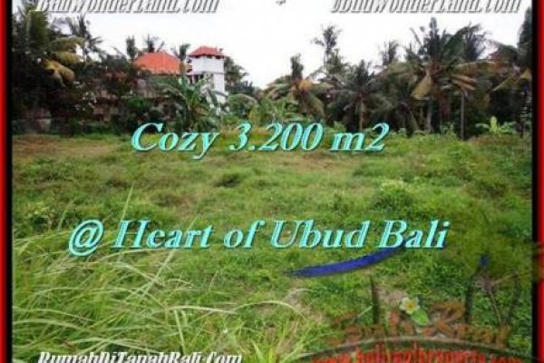 Exotic PROPERTY UBUD BALI 3,200 m2 LAND FOR SALE TJUB510