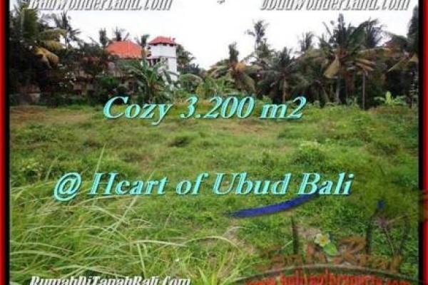 Beautiful PROPERTY 3,200 m2 LAND IN Sentral Ubud FOR SALE TJUB510