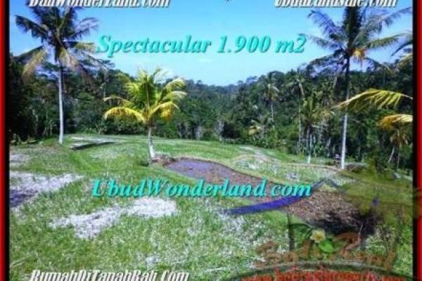 Affordable UBUD 1,900 m2 LAND FOR SALE TJUB505