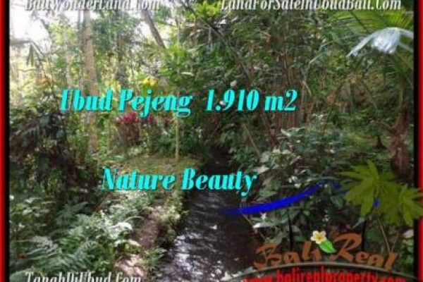 1,910 m2 LAND IN UBUD FOR SALE TJUB504