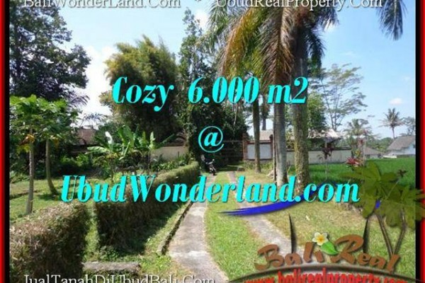 FOR SALE Magnificent 6,000 m2 LAND IN UBUD TJUB507