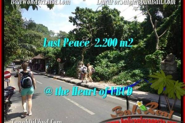 Sentral Ubud BALI LAND FOR SALE TJUB509