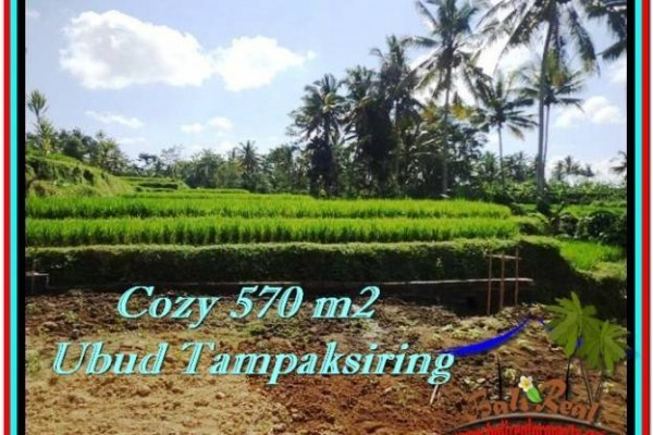 Magnificent PROPERTY 570 m2 LAND SALE IN UBUD BALI TJUB511