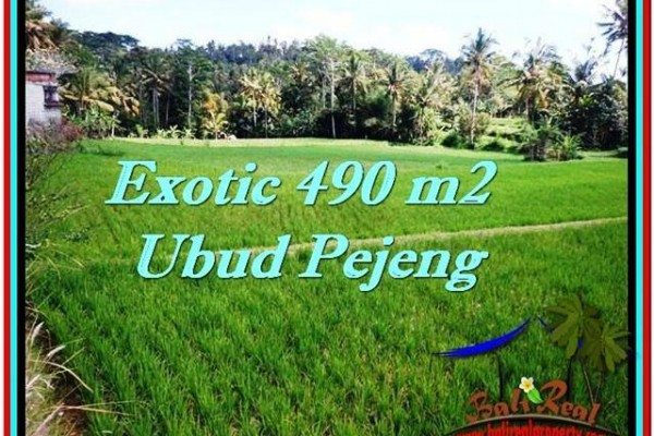 FOR SALE Beautiful PROPERTY 490 m2 LAND IN UBUD BALI TJUB512