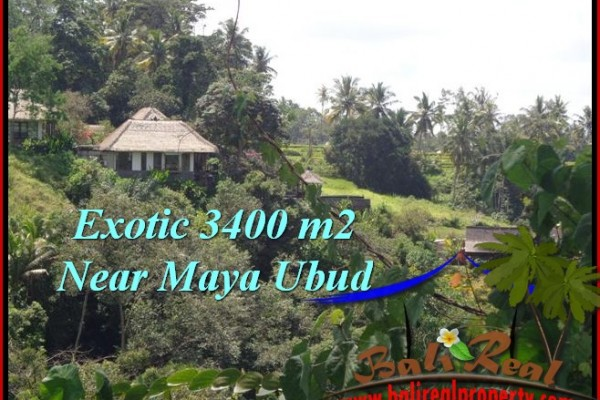 Exotic PROPERTY UBUD LAND FOR SALE TJUB514