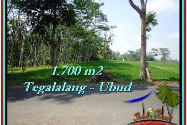 Exotic UBUD BALI 1,700 m2 LAND FOR SALE TJUB518
