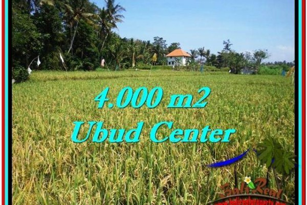 Beautiful LAND IN UBUD FOR SALE TJUB527
