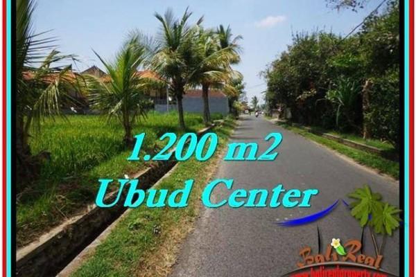 Exotic UBUD BALI 1,200 m2 LAND FOR SALE TJUB525