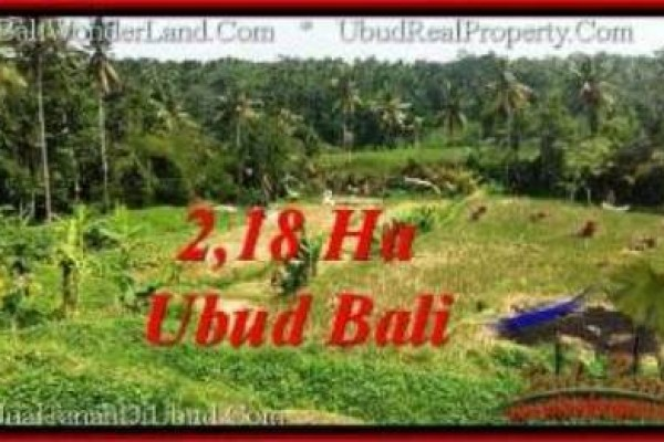 Affordable 21,800 m2 LAND FOR SALE IN UBUD BALI TJUB546
