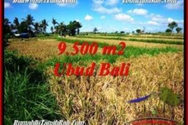 Exotic PROPERTY UBUD BALI LAND FOR SALE TJUB548
