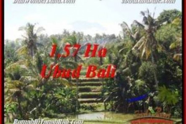 Beautiful PROPERTY 15,700 m2 LAND IN Sentral Ubud FOR SALE TJUB549