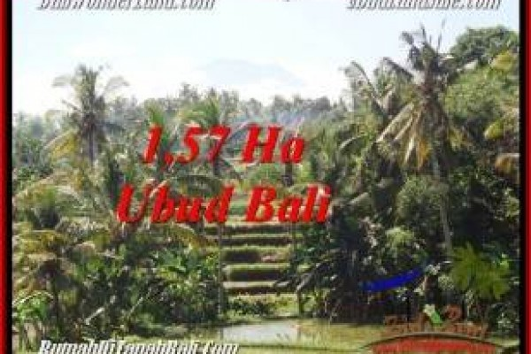 Affordable 15,700 m2 LAND FOR SALE IN UBUD BALI TJUB549