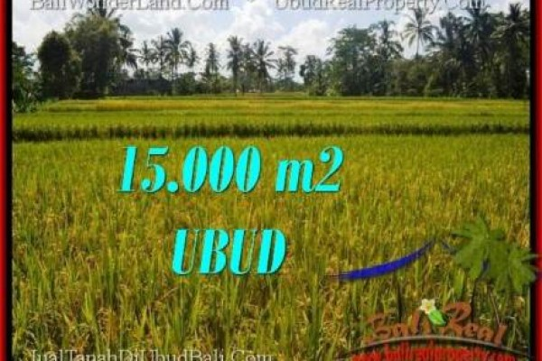 Magnificent LAND IN UBUD FOR SALE TJUB551