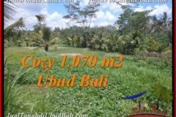 LAND SALE IN Sentral Ubud BALI TJUB536