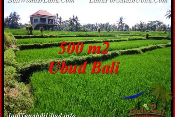 Exotic 500 m2 LAND SALE IN UBUD BALI TJUB543