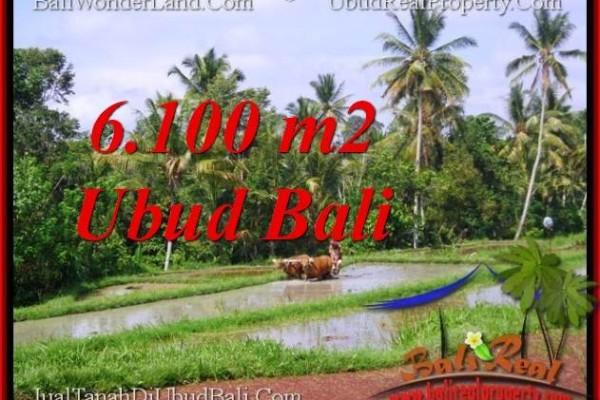 6,100 m2 LAND IN UBUD BALI FOR SALE TJUB552