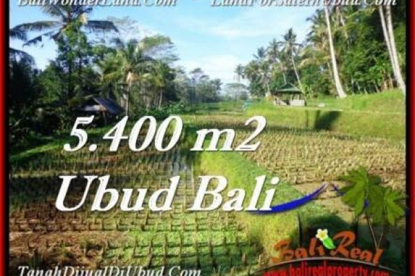 Exotic PROPERTY 5,400 m2 LAND IN Ubud Payangan FOR SALE TJUB554