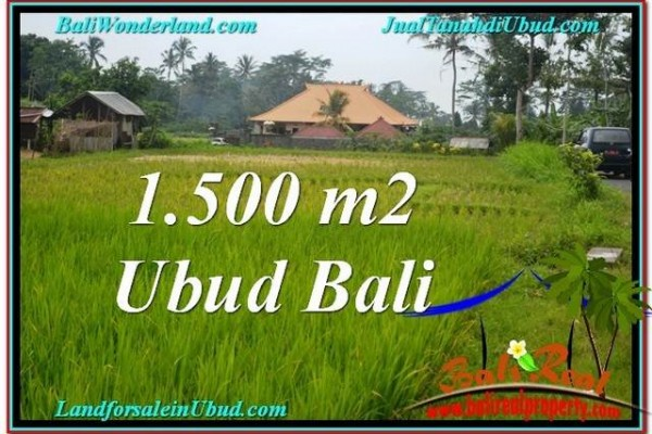 FOR SALE Exotic PROPERTY 1,500 m2 LAND IN UBUD BALI TJUB558