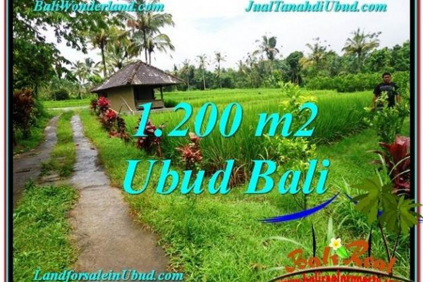 Magnificent PROPERTY 1,200 m2 LAND FOR SALE IN Ubud Payangan TJUB559