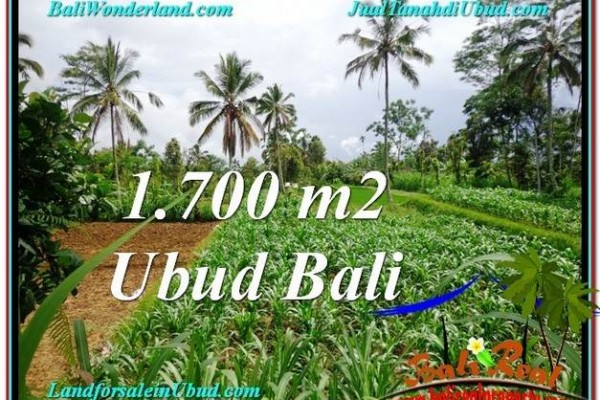 Magnificent PROPERTY Ubud Payangan 1,700 m2 LAND FOR SALE TJUB560