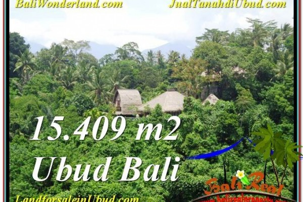 Beautiful PROPERTY LAND FOR SALE IN UBUD TJUB568
