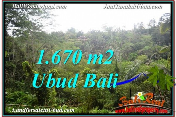 FOR SALE 1,670 m2 LAND IN UBUD TJUB569