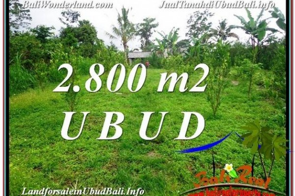 Exotic PROPERTY LAND IN UBUD FOR SALE TJUB592