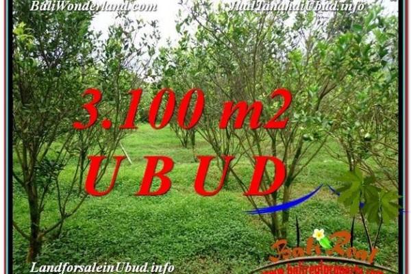 Affordable PROPERTY 3,100 m2 LAND IN Ubud Tegalalang FOR SALE TJUB593