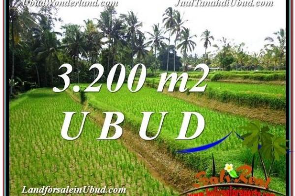 Affordable PROPERTY 3,200 m2 LAND SALE IN UBUD BALI TJUB594