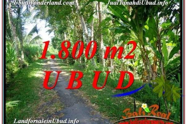 Magnificent PROPERTY 1,800 m2 LAND SALE IN Ubud Payangan TJUB597