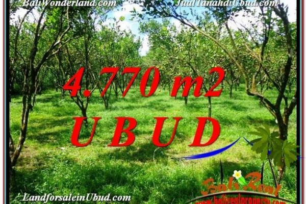 Magnificent PROPERTY 4,770 m2 LAND FOR SALE IN Ubud Tegalalang TJUB598
