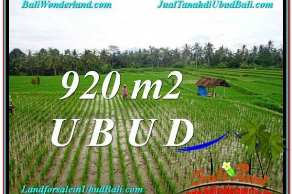 Magnificent UBUD BALI 920 m2 LAND FOR SALE TJUB575