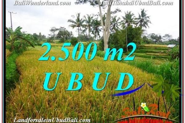 Beautiful 2,500 m2 LAND SALE IN UBUD BALI TJUB577