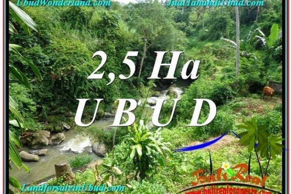 FOR SALE Affordable PROPERTY 26,000 m2 LAND IN UBUD BALI TJUB579