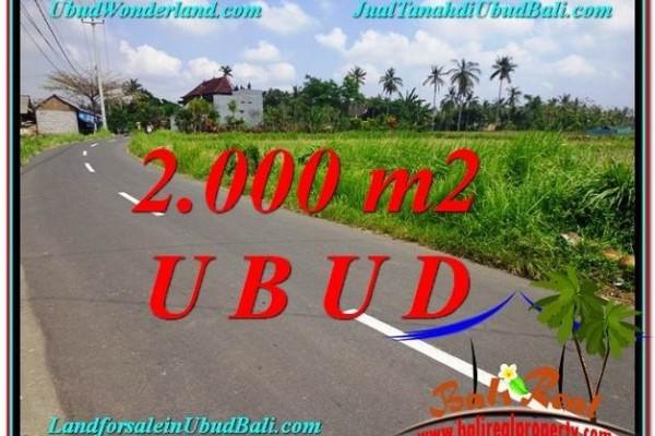 Affordable PROPERTY 2,000 m2 LAND IN UBUD BALI FOR SALE TJUB580