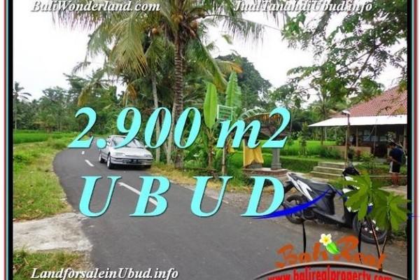 Exotic 2,900 m2 LAND FOR SALE IN UBUD BALI TJUB586