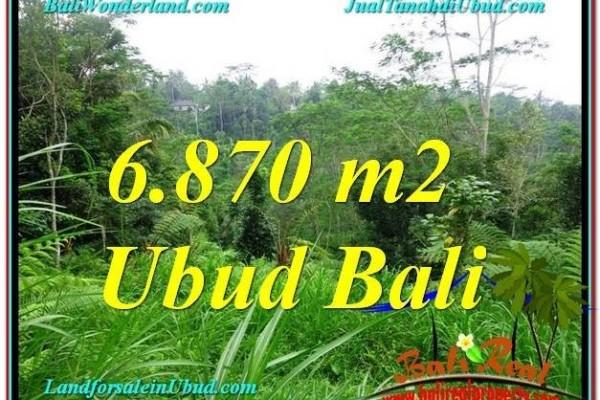 Exotic PROPERTY LAND SALE IN Ubud Tampak Siring BALI TJUB602