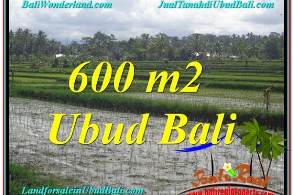 Exotic LAND SALE IN Ubud Tegalalang BALI TJUB607