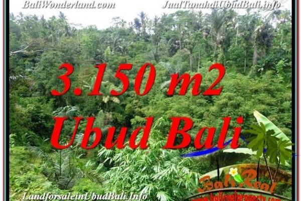 Affordable LAND FOR SALE IN Ubud Tegalalang BALI TJUB608