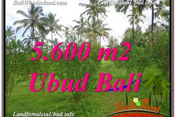FOR SALE Magnificent LAND IN Ubud Tegalalang BALI TJUB609