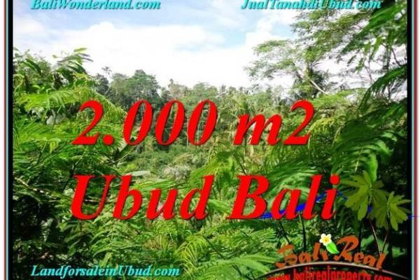 Affordable PROPERTY 2,000 m2 LAND FOR SALE IN Ubud Tegalalang TJUB611