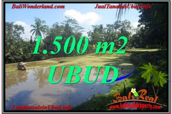 Magnificent PROPERTY 1,500 m2 LAND IN Ubud Payangan BALI FOR SALE TJUB630