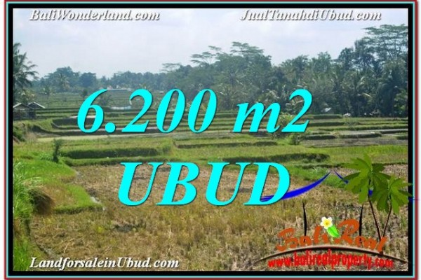 FOR SALE Magnificent PROPERTY LAND IN UBUD TJUB631