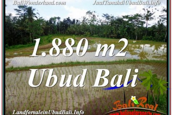Exotic PROPERTY LAND IN UBUD FOR SALE TJUB613