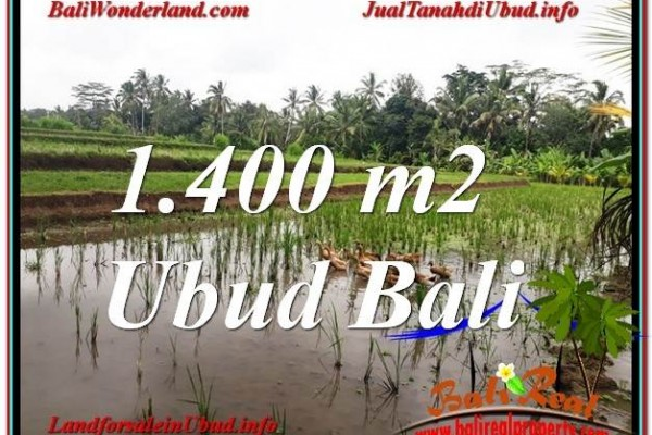Magnificent PROPERTY UBUD LAND FOR SALE TJUB615
